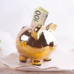 ŚWINKA skarbonka na pieniążki Prezent dla dziecka